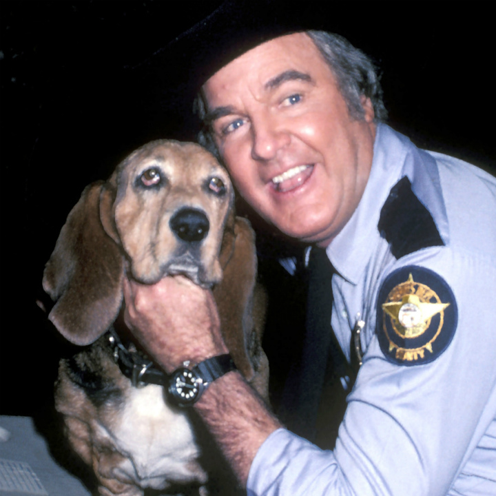 sheriff rosco coltrane and flash